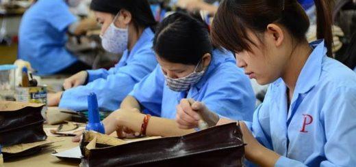 39 người Việt làm việc bằng 1 người Nhật - ảnh 1